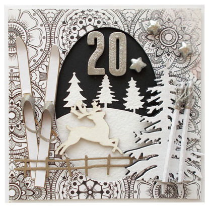 Obrázek Přání k 20. narozeninám Lyže