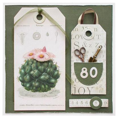 Obrázek Přáníčko k 80. narozeninám Kaktus