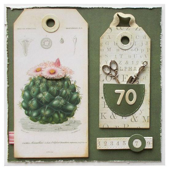 Obrázek Přáníčko k 70. narozeninám Kaktus