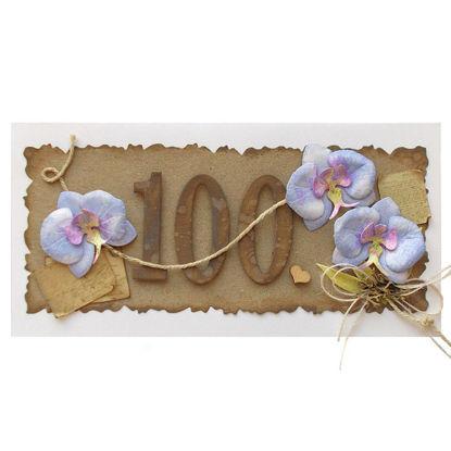 Obrázek Přání k 100. narozeninám Orchidej