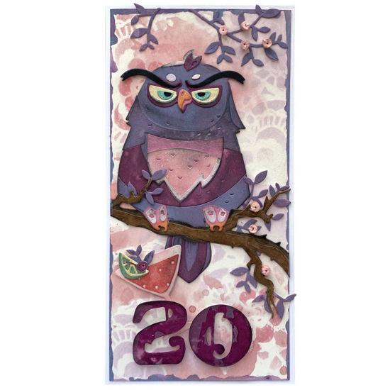 Obrázek Přání k 20. narozeninám Se sovou