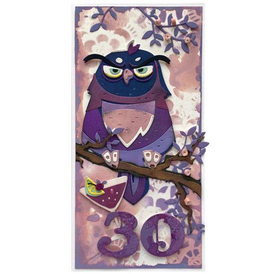 Obrázek Přání k 30. narozeninám Se sovou